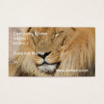 Adorable Lion Business Card