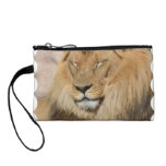 Adorable Lion Coin Purse