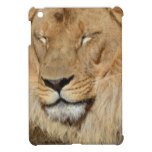 Adorable Lion Cover For The iPad Mini