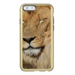 Adorable Lion Incipio Feather Shine iPhone 6 Case