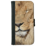 Adorable Lion iPhone 6/6s Wallet Case