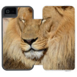 Adorable Lion iPhone SE/5/5s Wallet Case
