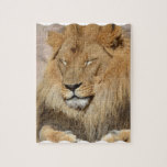 Adorable Lion Jigsaw Puzzle