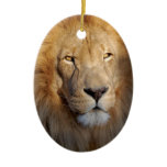 Lion Images Ornament