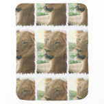 Sweet Lioness Swaddle Blanket